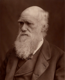 Charles Darwin 1877 (cropped).png