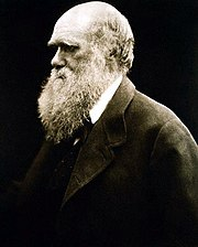 Portrait of Charles Darwin from Wikipedia