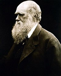 Julia Margaret Cameron's portrait of Darwin.