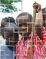 Child Sao Tome 114 (2376351687).jpg