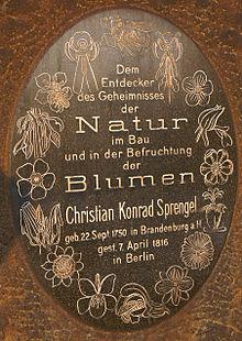 Christian Konrad Sprengel - Wikipedia