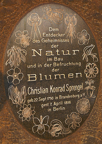 Christian Konrad Sprengel - A small monument designed after the frontispiece of his fundamental work can be seen in Berlin Botanical Gardens. This was erected by Adolf Engler in 1917 on Sprengel's 100th birth anniversary.