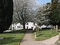 Churchyard path, St. Mary's - geograph.org.uk - 1252685.jpg