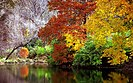 "Cincinnati - Spring Grove Cemetery & Arboretum ""Autumn Reflection"" (15630100199).jpg"