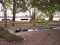 Cisnes Parque Rosalía de Castro, Lugo 2.jpg