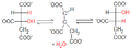 Citrate-isocitrate (reaction).png