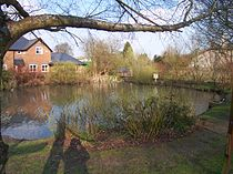 Cliddesden-village-pond.jpg