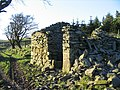 Close up of ruin near Pant-y-fotty - geograph.org.uk - 328013.jpg