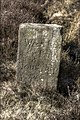 Close up of the boundary stone - geograph.org.uk - 754761.jpg