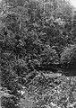Collectie NMvWereldculturen, TM-60032921, Foto- 'Een auto passeert een kloof tussen Loeboek Sikaping en Fort de Kock', fotograaf onbekend, 1920-1926.jpg