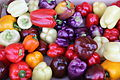 Colorful Bell Peppers.JPG
