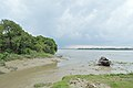 Confluence - River Saraswati and River Hooghly - Sankrail - Howrah - 2013-08-11 1442.JPG