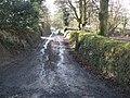 Country lane, near Nethercott House - geograph.org.uk - 1135161.jpg