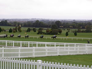 Horse Racing Ireland - Navan Races in September 2007