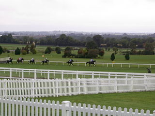 Horse Racing Ireland Governing body for horse racing on the island of Ireland