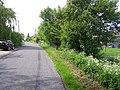 Cox Common - geograph.org.uk - 439564.jpg