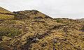 Cráter Stóri Grábrók, Vesturland, Islandia, 2014-08-15, DD 099.JPG