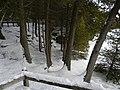 Crawford Lake Trail, Ontario, Canada5.JPG