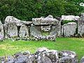 Creevykeel stones circles Ireland court tombs.jpg