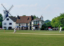 Cricket on Meopham Green - geograph.org.uk - 924059.jpg