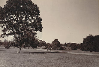 Cubbon Park - Image: Cubbon Park, Bangalore (1890). Curzon Collection's 'Souvenir of Mysore Album'