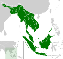 Cyclemys dentata distribution map.png