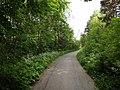 Cykelväg Peltola skog 2012.jpg