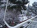 DAFNI - panoramio.jpg
