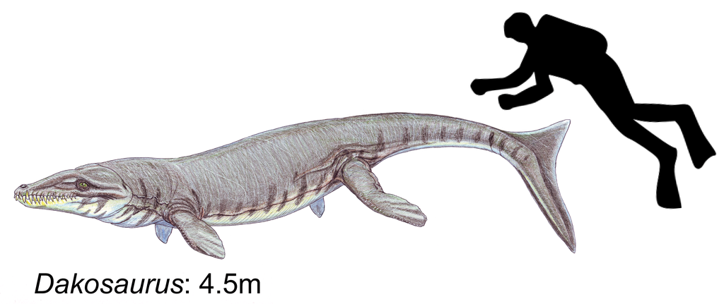 1024px-Dakosaurus_maximus.png