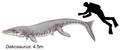 Dakosaurus maximus.png