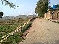 Dallan , Khyber Pakhtunkhwa , Pakistan - panoramio (3).jpg