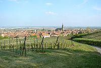 Dambach-la-Ville plain Alsace.JPG