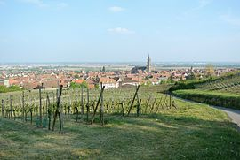 Panorama of Dambach-la-Ville, seen towards southeast and the plain