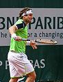 David Ferrer - Roland Garros 2013 - 008.jpg
