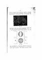 De Flüssige Kristalle Lehmann 61.jpg