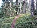 Degučių sen., Lithuania - panoramio (164).jpg