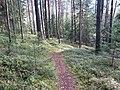 Degučių sen., Lithuania - panoramio (176).jpg