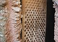 Detail, Studded Door (3301053928).jpg