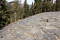 Devils Postpile National Monument-17.jpg