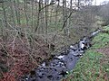 Dewsgreen Burn at Bear's Bridge - geograph.org.uk - 622612.jpg
