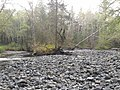 Dick Booth Creek-Quastse River - panoramio.jpg
