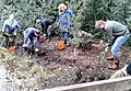 Digging out wet woodland at Gunnersbury Triangle.jpg