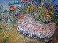 Diorama of a Silurian seafloor - crinoids, trilobites, corals, algae, bivalve, brachiopods, bryozoans (45718687151).jpg