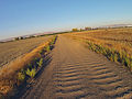 Dirt Road - Fremont - CA.jpg