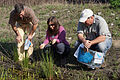 Discussing wetland plants (7067596077).jpg