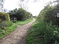 Downs Link Footpath - geograph.org.uk - 607926.jpg