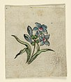 Drawing, Woodblock Trial Proof for a Printed Textile, 1780–90 (CH 18167679-2).jpg