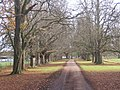 Driveway to Dalham Hall from the entrance gateway - geograph.org.uk - 623066.jpg