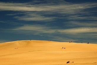 Tourism in Uruguay - Sand dunes near Cabo Polonio.