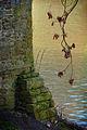 Durham cathedral park 2 (9278642503).jpg